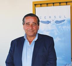 Luís Bulhão Martins, Cersul